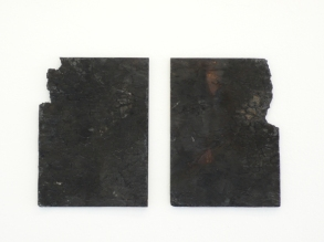 Untitled (Exposures), 2010