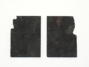 Untitled (Exposures), 2010