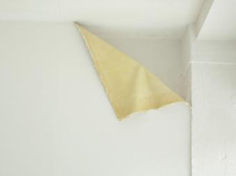 Untitled (Revelation), 2010